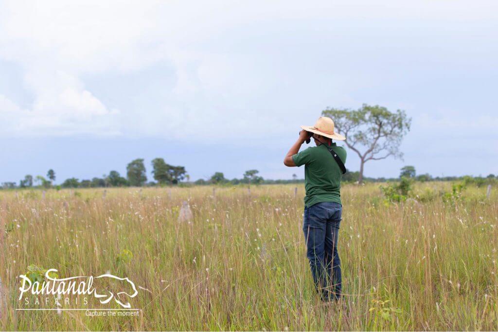 Pantanal guides